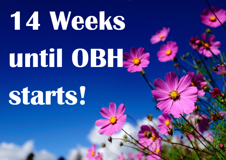 OBH Countdown 2019 pink flowers and sky